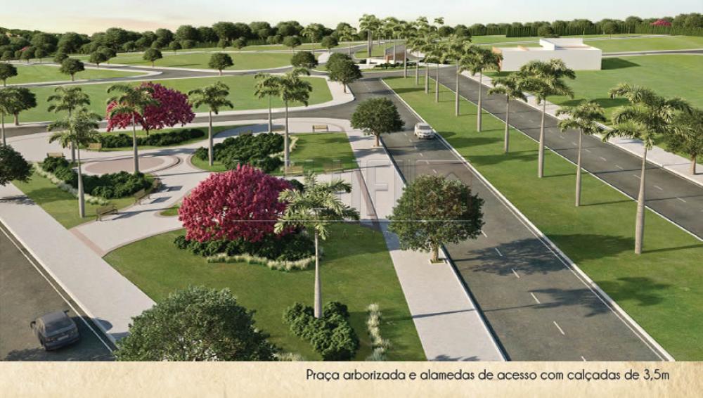 Comprar Terrenos / Padrão em Olímpia apenas R$ 73.000,00 - Foto 3