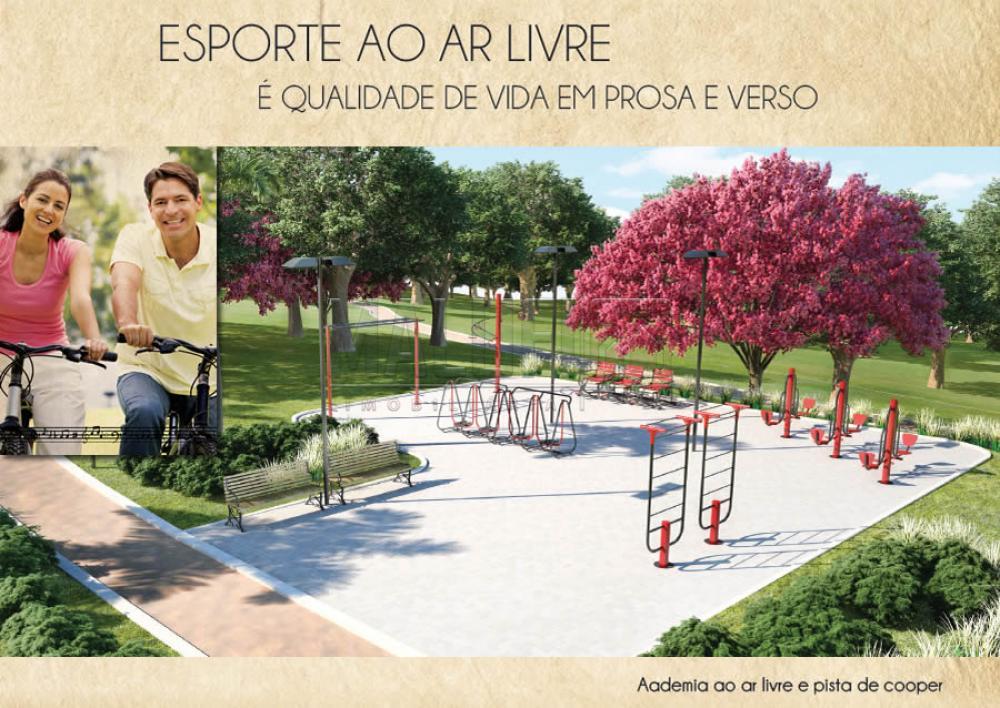 Comprar Terrenos / Padrão em Olímpia apenas R$ 73.000,00 - Foto 4