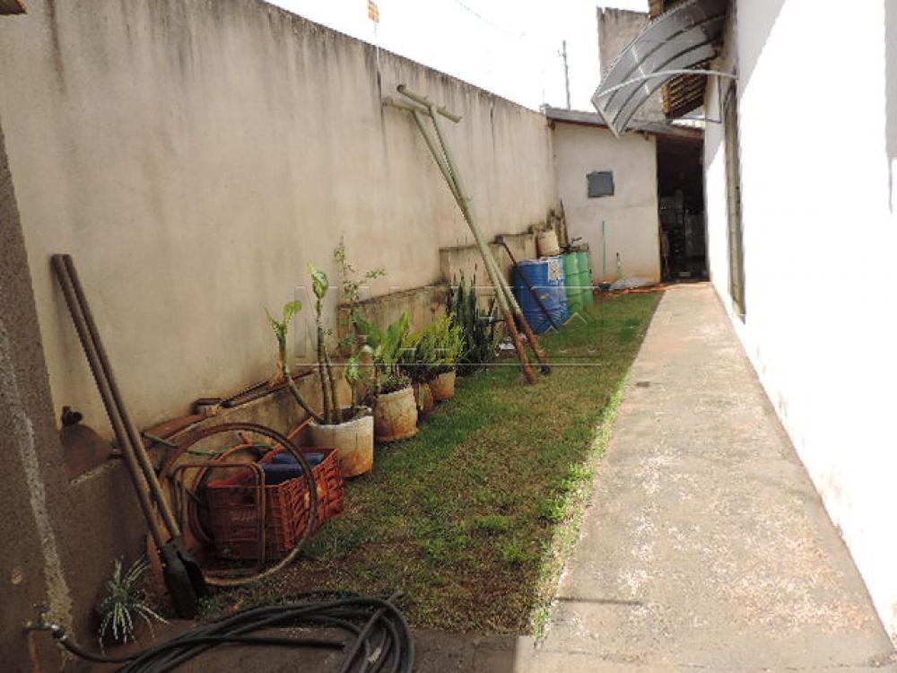 Comprar Casas / Padrão em Olímpia apenas R$ 350.000,00 - Foto 10