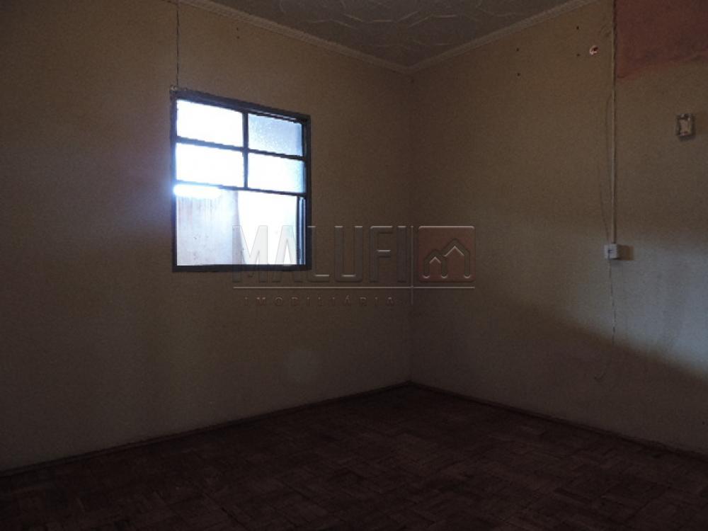 Alugar Casas / Padrão em Olímpia apenas R$ 750,00 - Foto 3