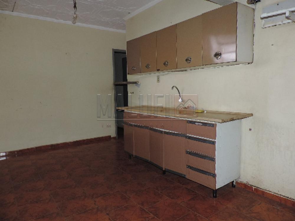 Alugar Casas / Padrão em Olímpia apenas R$ 750,00 - Foto 5