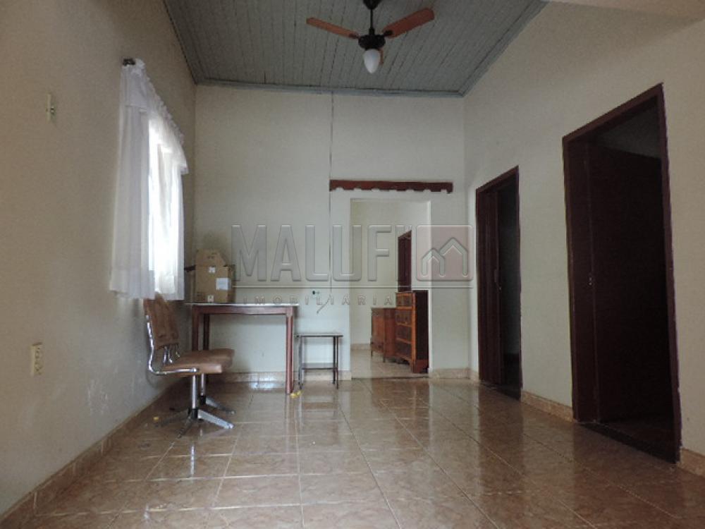 Comprar Casas / Padrão em Olímpia apenas R$ 170.000,00 - Foto 2