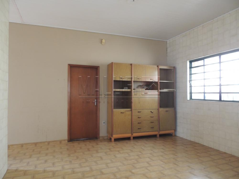 Alugar Casas / Padrão em Olímpia apenas R$ 1.700,00 - Foto 10