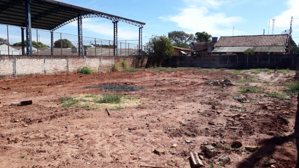 Comprar Terrenos / Padrão em Olímpia apenas R$ 240.000,00 - Foto 2