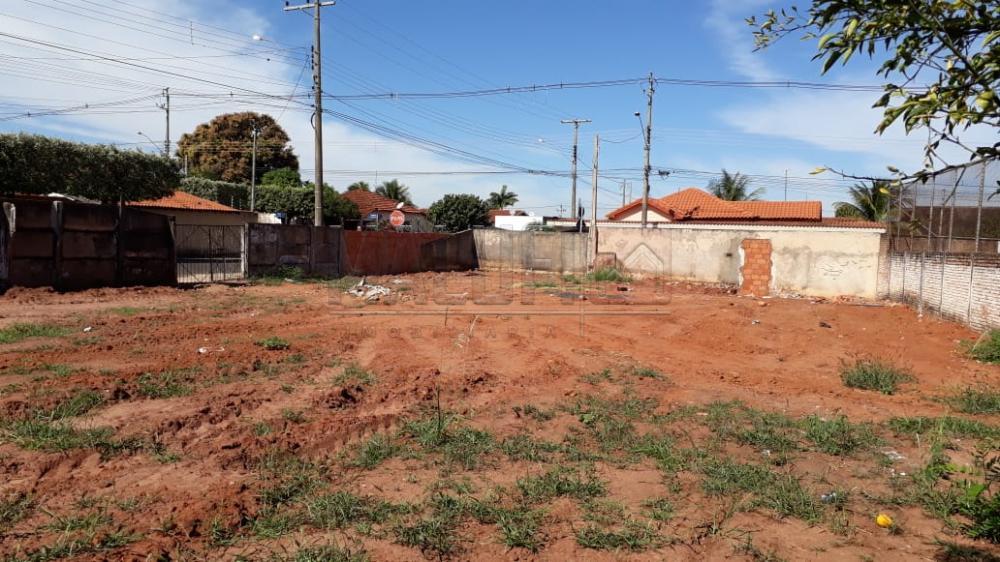 Comprar Terrenos / Padrão em Olímpia apenas R$ 240.000,00 - Foto 1