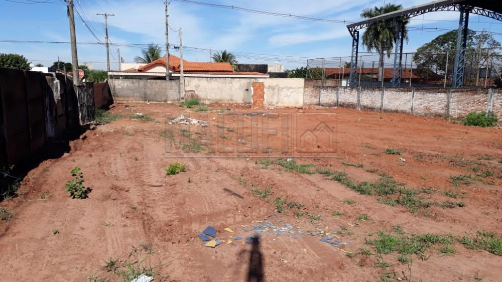Comprar Terrenos / Padrão em Olímpia apenas R$ 240.000,00 - Foto 3