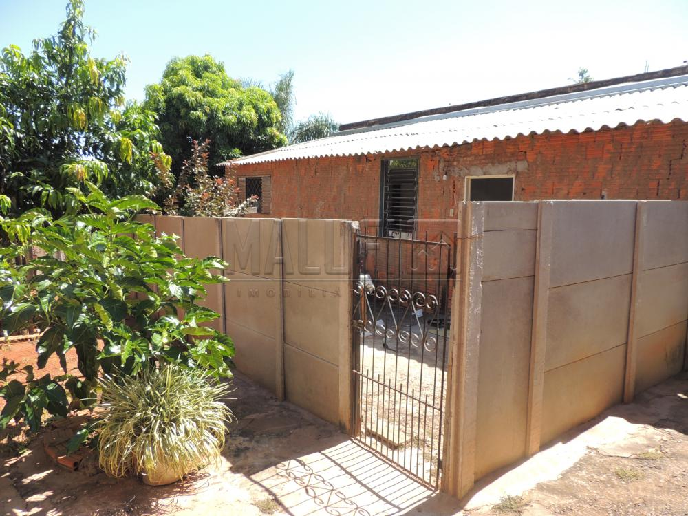 Comprar Casas / Padrão em Olímpia apenas R$ 200.000,00 - Foto 13