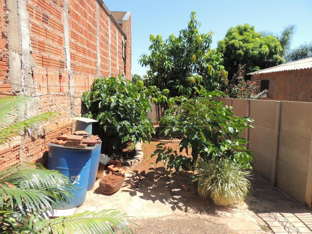 Comprar Casas / Padrão em Olímpia apenas R$ 200.000,00 - Foto 12