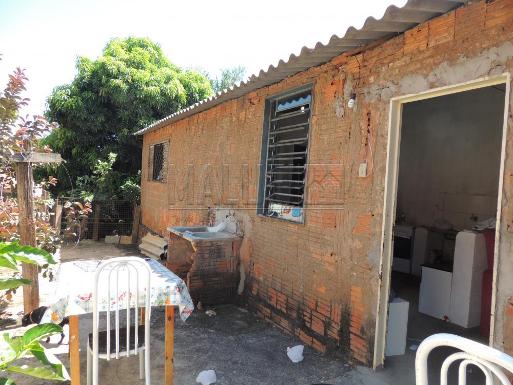 Comprar Casas / Padrão em Olímpia apenas R$ 200.000,00 - Foto 11