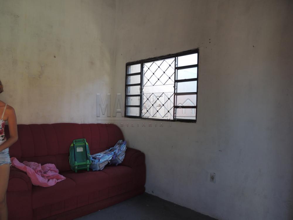 Comprar Casas / Padrão em Olímpia apenas R$ 200.000,00 - Foto 9