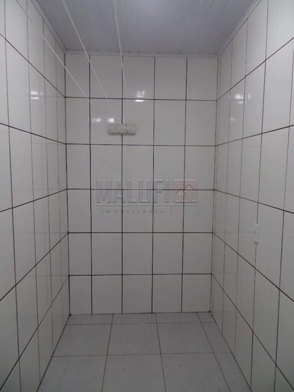 Alugar Casas / Padrão em Olímpia apenas R$ 1.700,00 - Foto 22