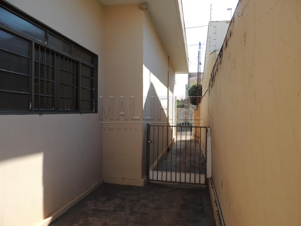 Alugar Casas / Padrão em Olímpia apenas R$ 1.700,00 - Foto 8