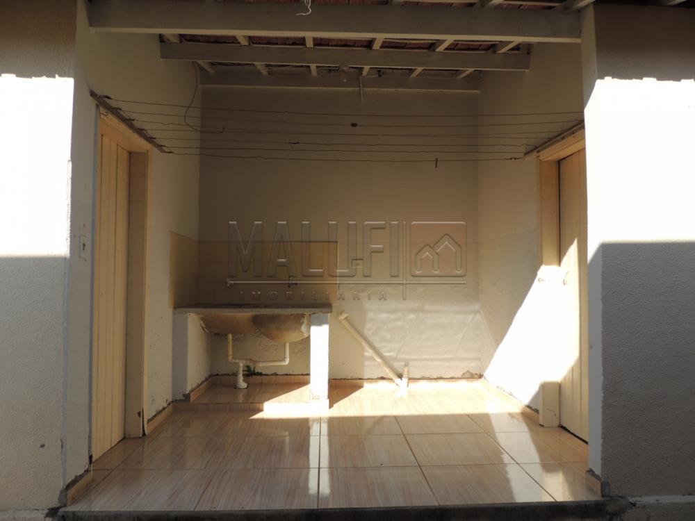 Alugar Casas / Padrão em Olímpia apenas R$ 1.700,00 - Foto 11