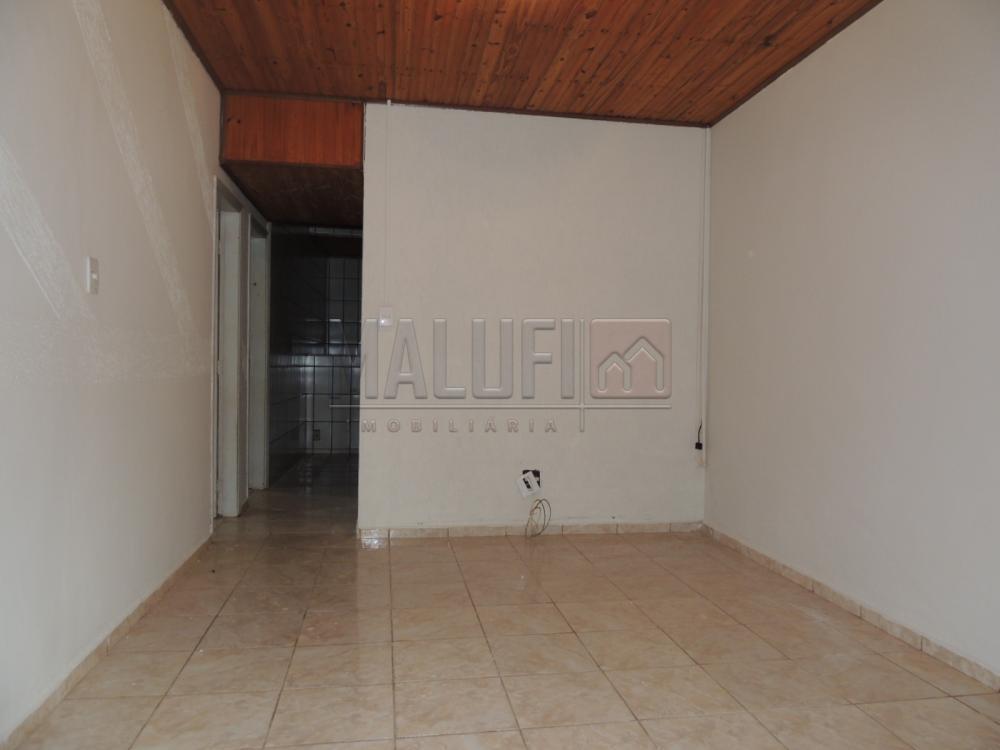 Alugar Casas / Padrão em Olímpia R$ 1.200,00 - Foto 2