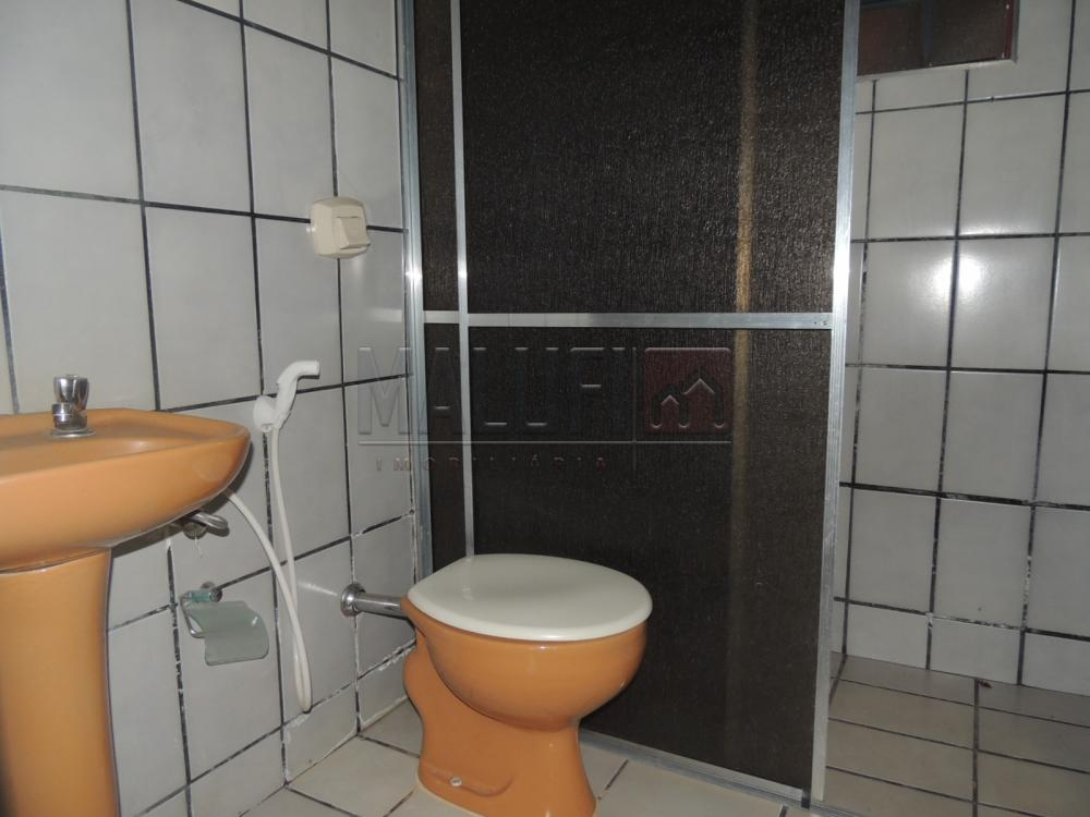 Alugar Casas / Padrão em Olímpia R$ 1.200,00 - Foto 5