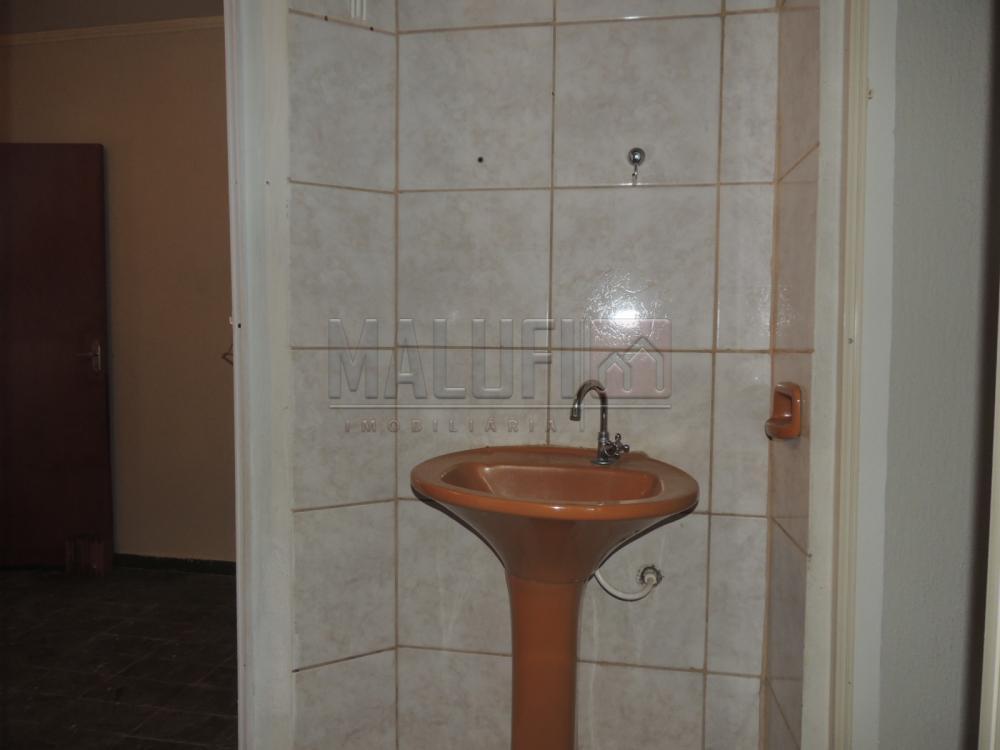 Alugar Casas / Padrão em Olímpia R$ 1.200,00 - Foto 7