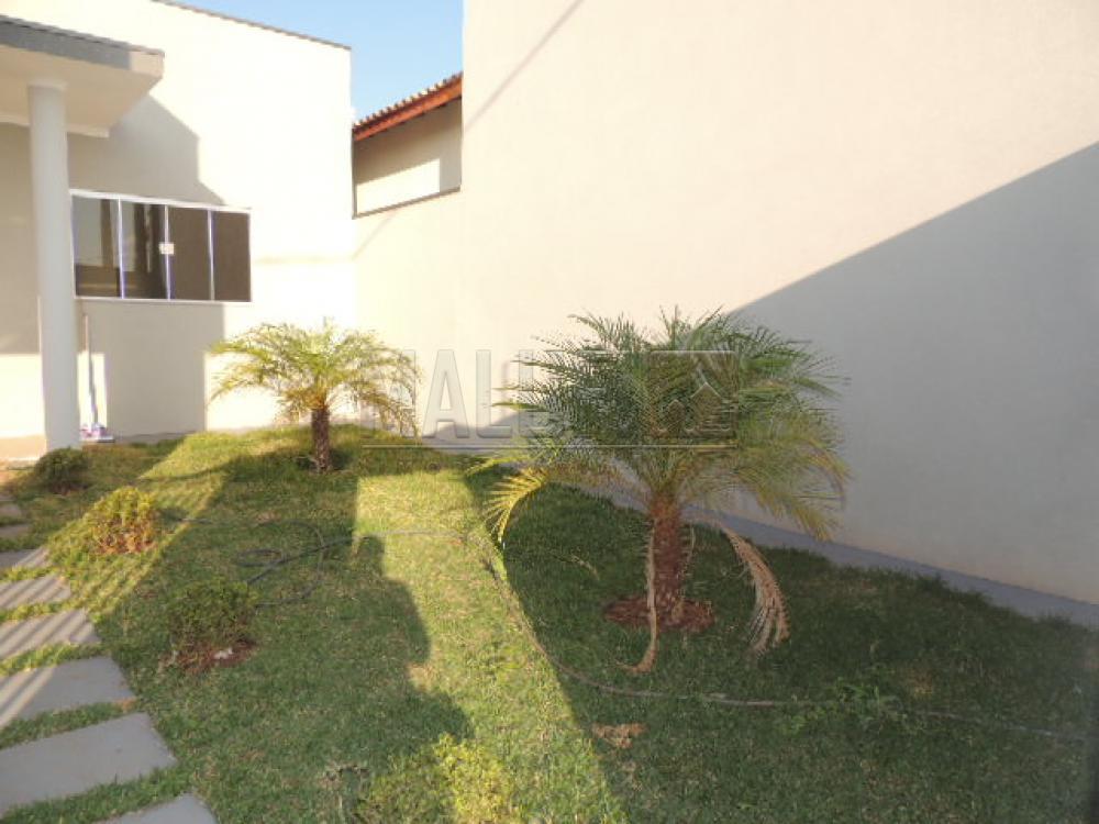 Alugar Casas / Padrão em Olímpia apenas R$ 1.500,00 - Foto 1