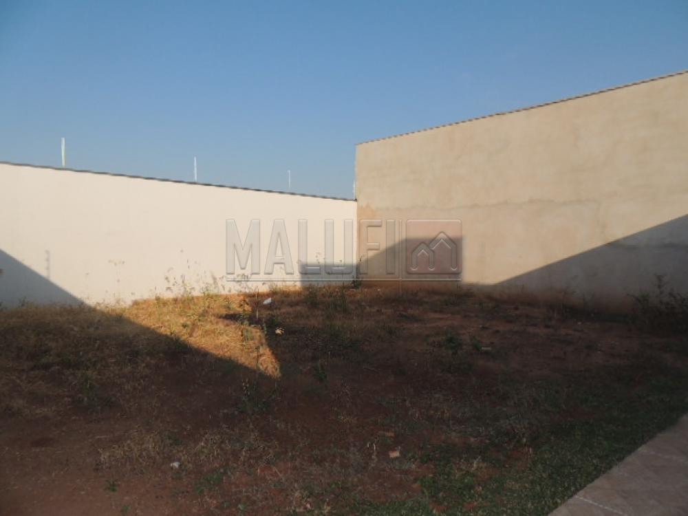 Alugar Casas / Padrão em Olímpia apenas R$ 1.500,00 - Foto 13
