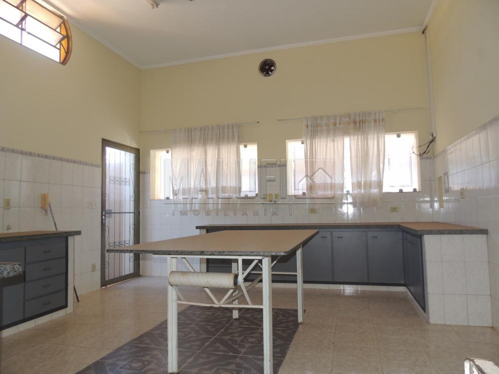 Alugar Casas / Padrão em Olímpia apenas R$ 3.000,00 - Foto 5