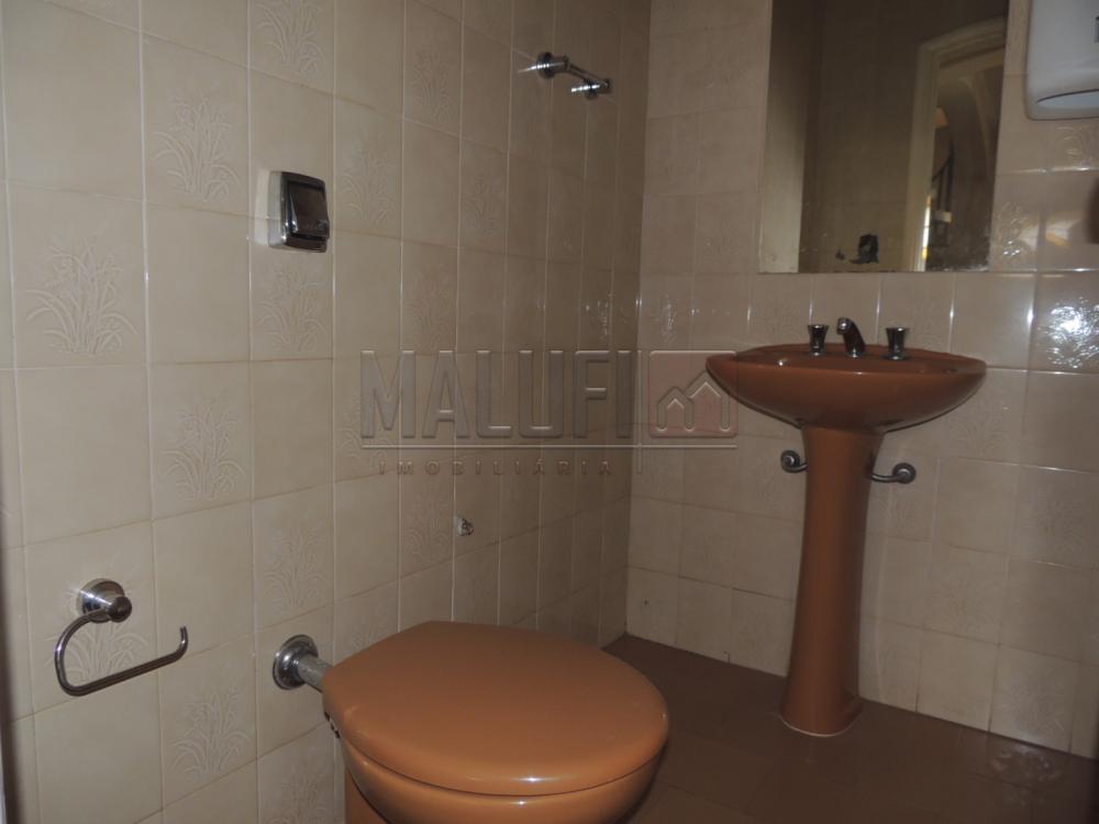 Alugar Casas / Padrão em Olímpia apenas R$ 3.000,00 - Foto 11