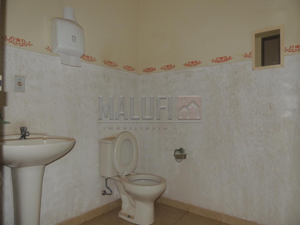 Alugar Casas / Padrão em Olímpia apenas R$ 3.000,00 - Foto 13