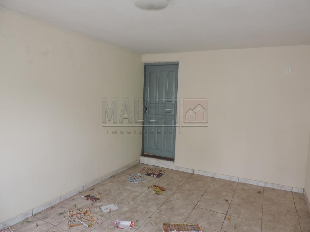Alugar Casas / Padrão em Olímpia apenas R$ 750,00 - Foto 2