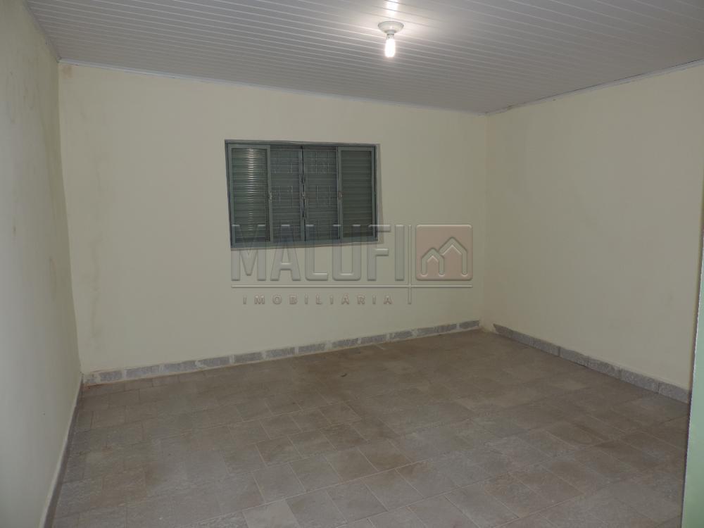 Alugar Casas / Padrão em Olímpia apenas R$ 750,00 - Foto 4