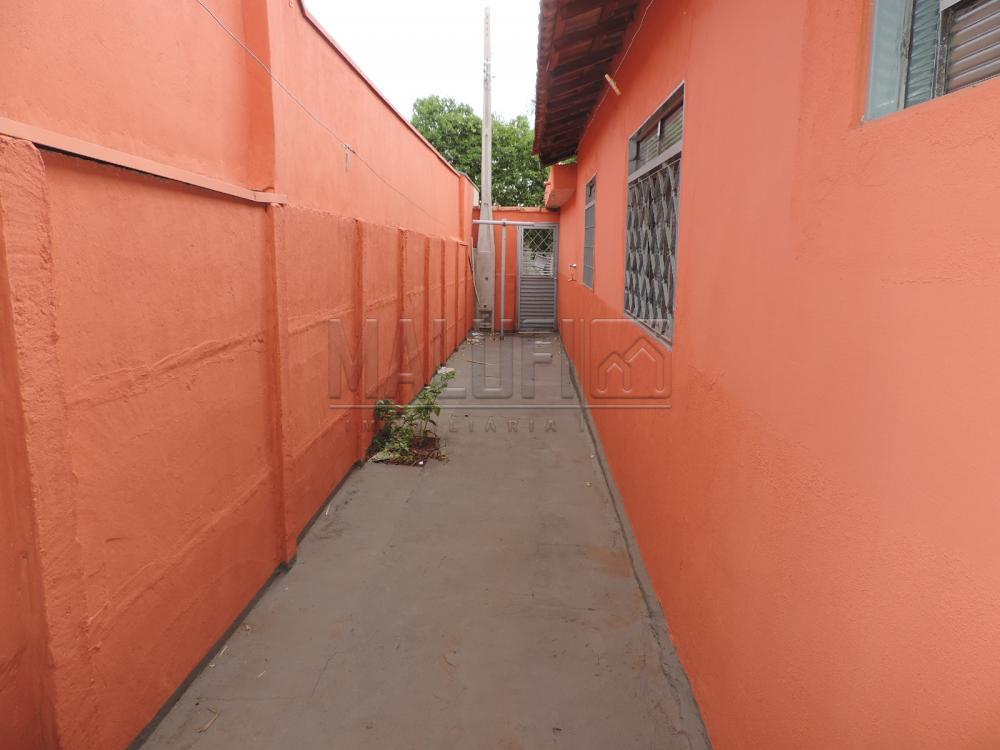 Alugar Casas / Padrão em Olímpia apenas R$ 750,00 - Foto 11