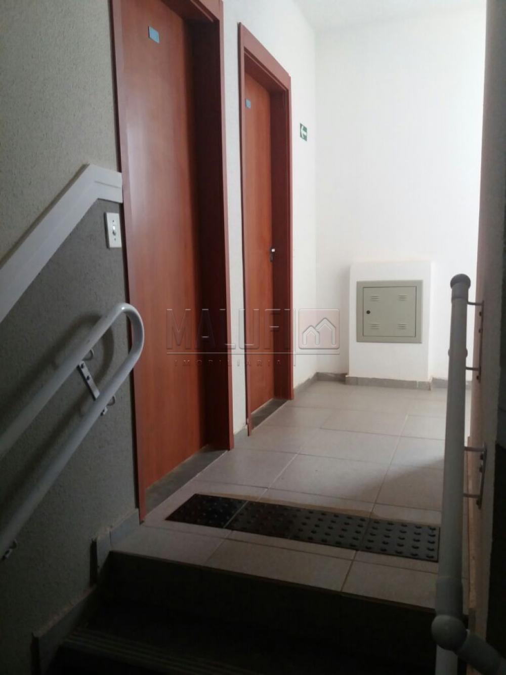 Alugar Apartamentos / Padrão em São José do Rio Preto apenas R$ 1.200,00 - Foto 4