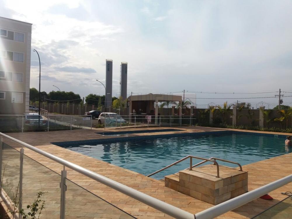 Alugar Apartamentos / Padrão em São José do Rio Preto apenas R$ 1.200,00 - Foto 3