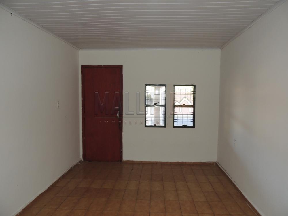 Alugar Casas / Padrão em Olimpia apenas R$ 650,00 - Foto 3