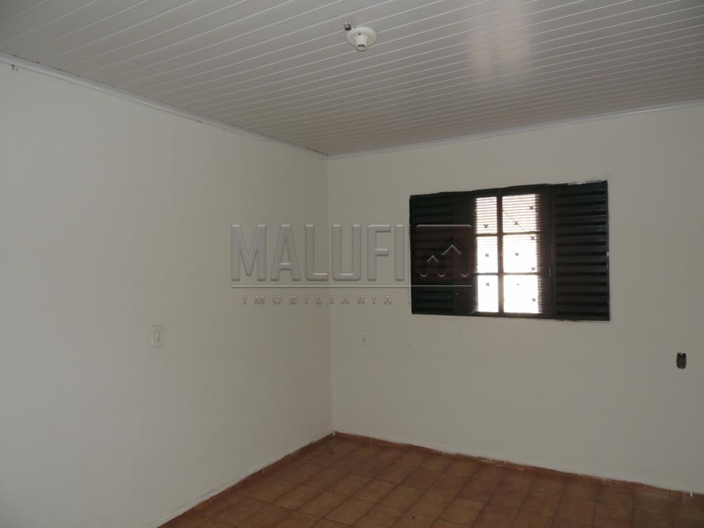 Alugar Casas / Padrão em Olimpia apenas R$ 650,00 - Foto 4