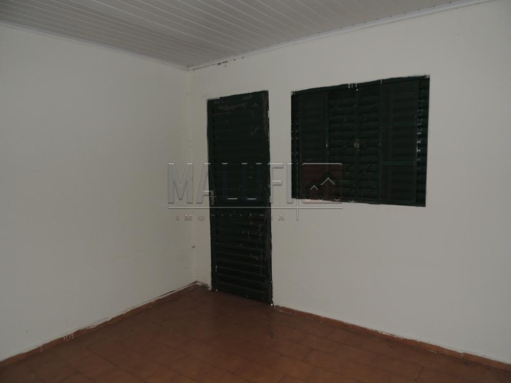 Alugar Casas / Padrão em Olimpia apenas R$ 650,00 - Foto 9