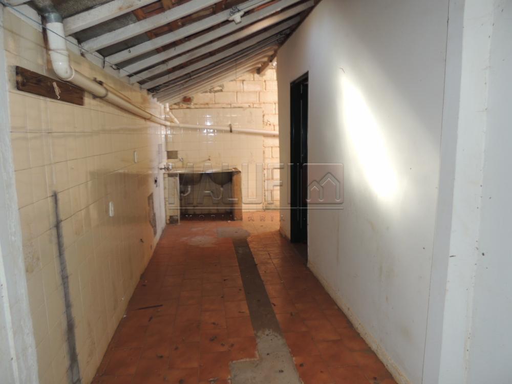 Alugar Casas / Padrão em Olimpia apenas R$ 650,00 - Foto 11