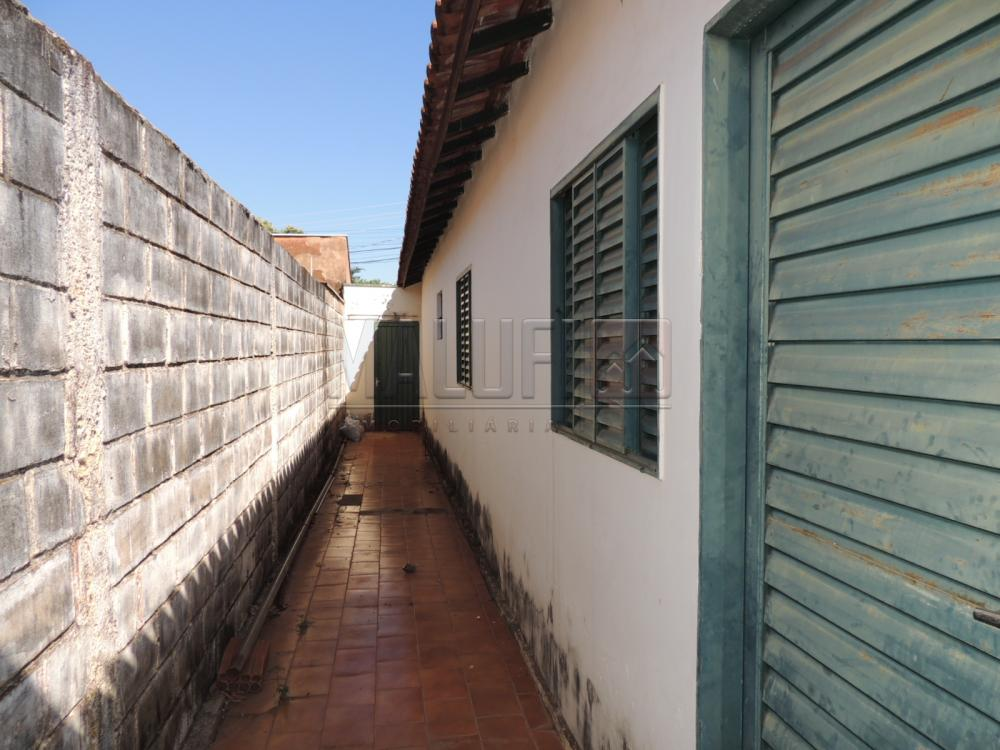 Alugar Casas / Padrão em Olimpia apenas R$ 650,00 - Foto 13