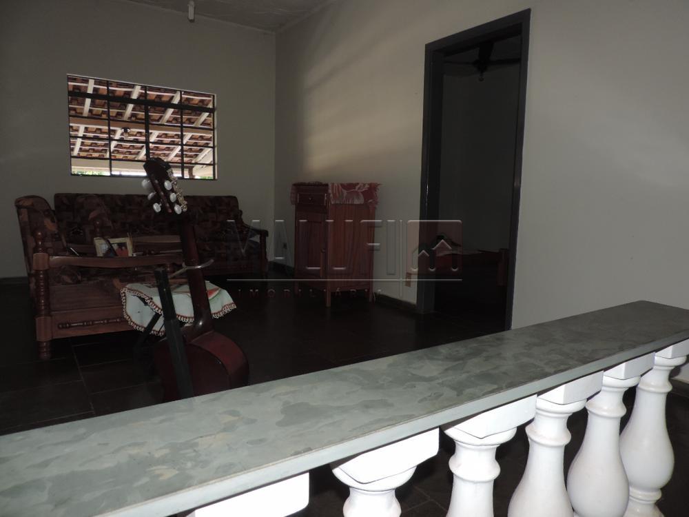 Alugar Casas / Padrão em Olímpia apenas R$ 1.200,00 - Foto 1