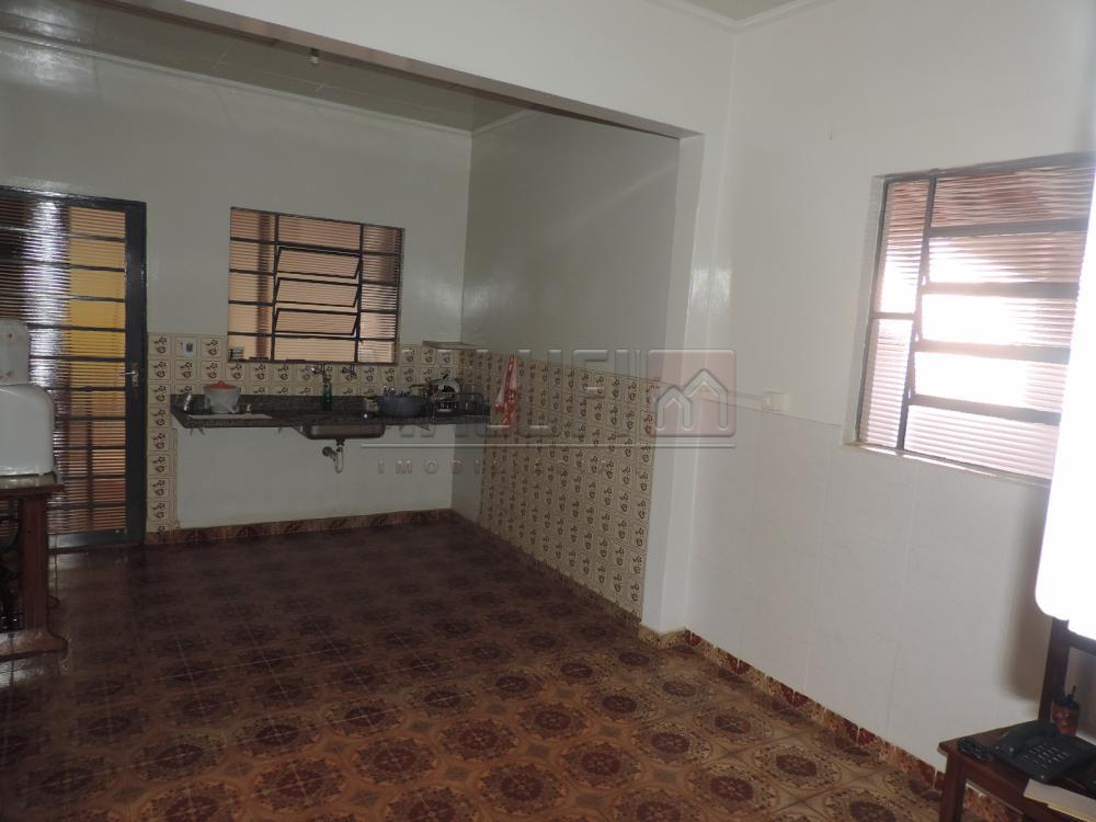 Alugar Casas / Padrão em Olímpia apenas R$ 1.200,00 - Foto 6