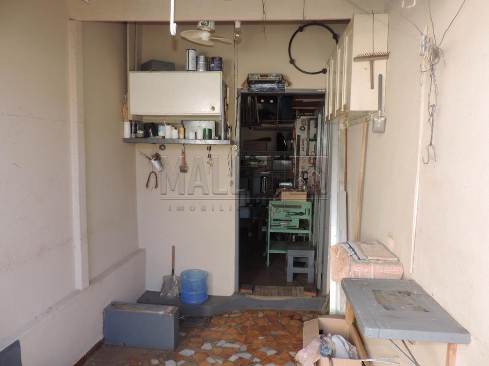 Alugar Casas / Padrão em Olímpia apenas R$ 1.200,00 - Foto 15