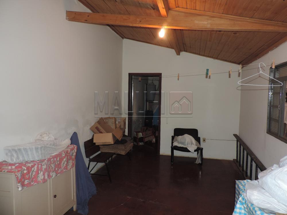 Alugar Casas / Padrão em Olímpia apenas R$ 1.200,00 - Foto 17