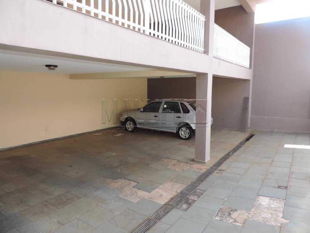 Alugar Casas / Padrão em Olímpia apenas R$ 3.300,00 - Foto 2