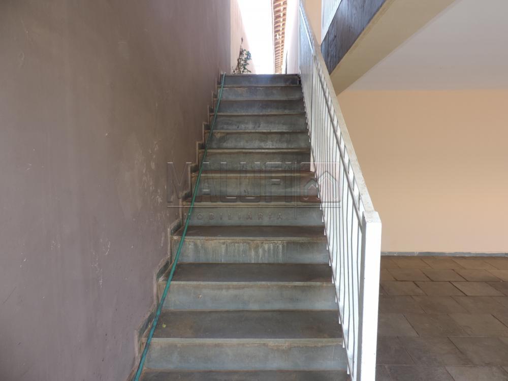 Alugar Casas / Padrão em Olímpia apenas R$ 3.300,00 - Foto 4