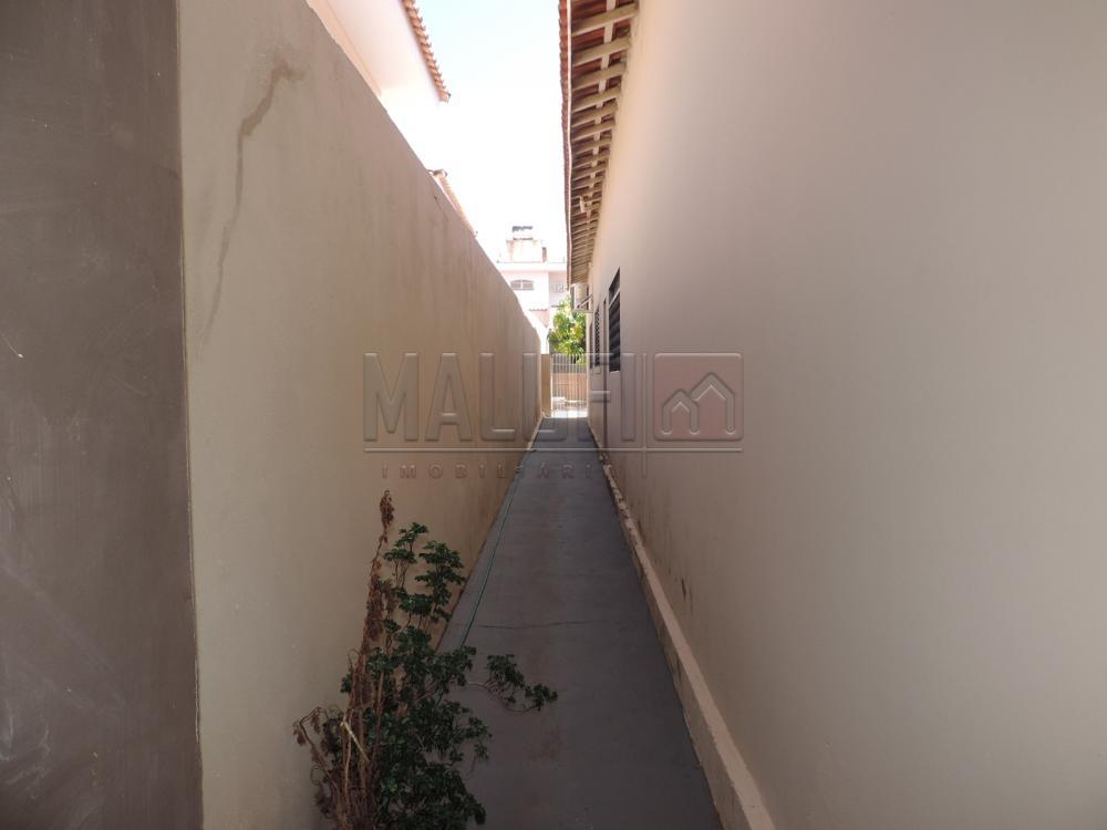 Alugar Casas / Padrão em Olímpia apenas R$ 3.300,00 - Foto 5