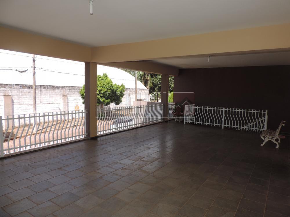 Alugar Casas / Padrão em Olímpia apenas R$ 3.300,00 - Foto 7