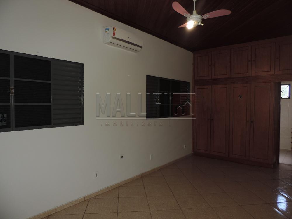 Alugar Casas / Padrão em Olímpia apenas R$ 3.300,00 - Foto 21