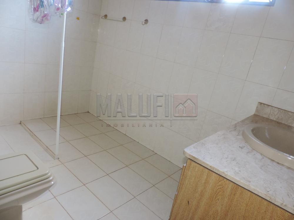 Alugar Casas / Padrão em Olímpia apenas R$ 3.300,00 - Foto 22