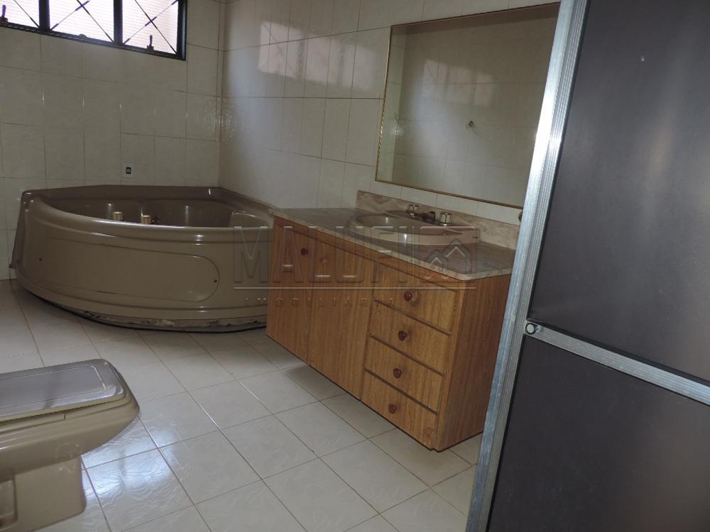 Alugar Casas / Padrão em Olímpia apenas R$ 3.300,00 - Foto 24