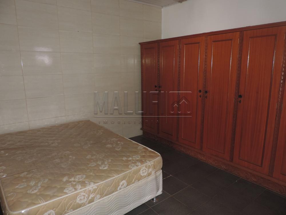 Alugar Casas / Padrão em Olímpia apenas R$ 3.300,00 - Foto 31