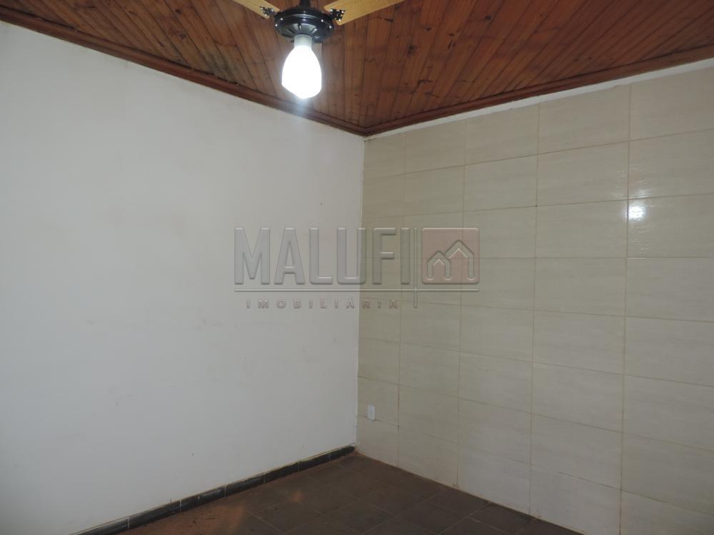 Alugar Casas / Padrão em Olímpia apenas R$ 3.300,00 - Foto 33