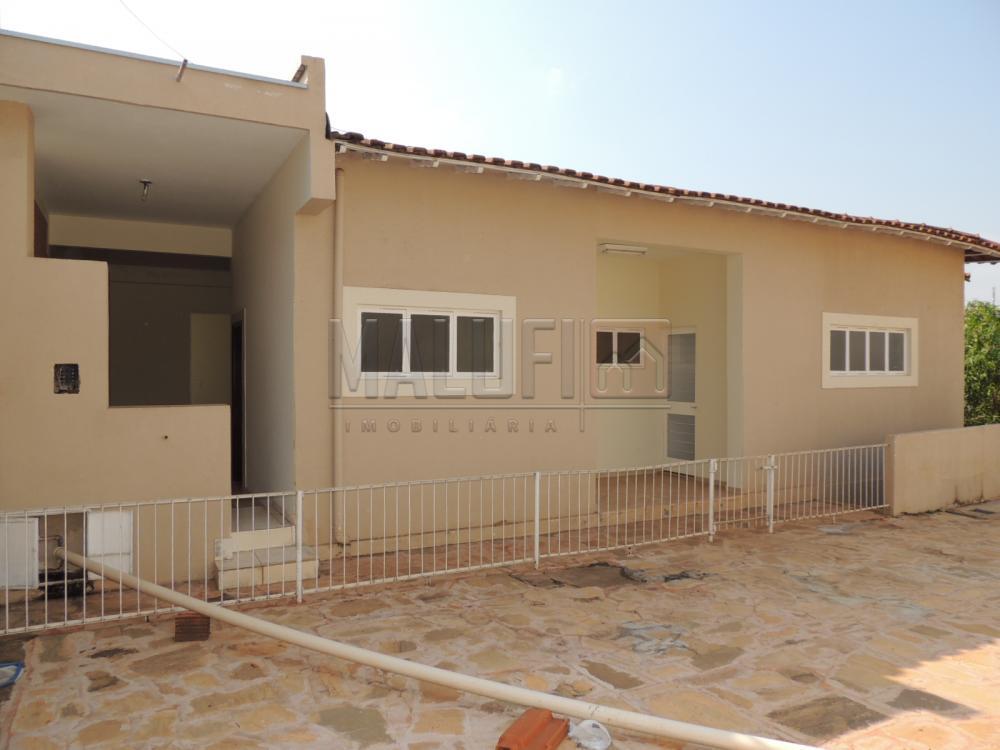 Alugar Casas / Padrão em Olímpia R$ 2.000,00 - Foto 4