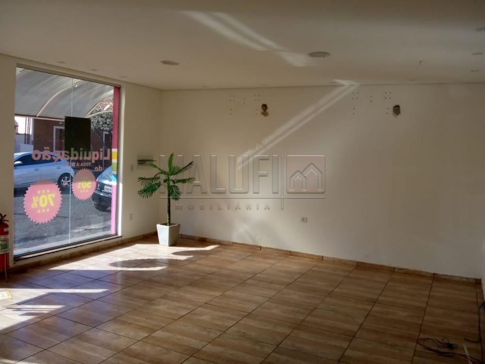 Alugar Comerciais / Sala em Olímpia apenas R$ 1.000,00 - Foto 1